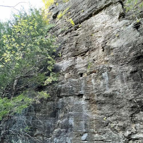 Rockwoods